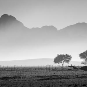 Fotografia podróżnicza Namibia